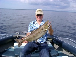 P che saguenay lac st jean small