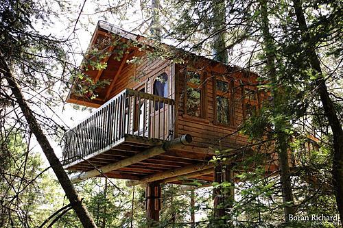 Maison dans les arbres 2 small