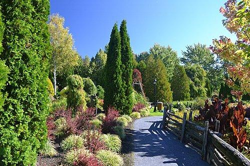 Jardin sentiers small