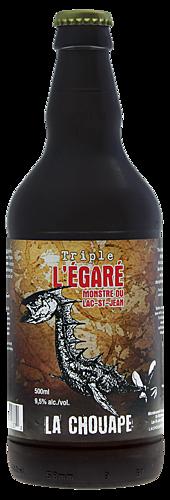 Belge legare 3.5 small