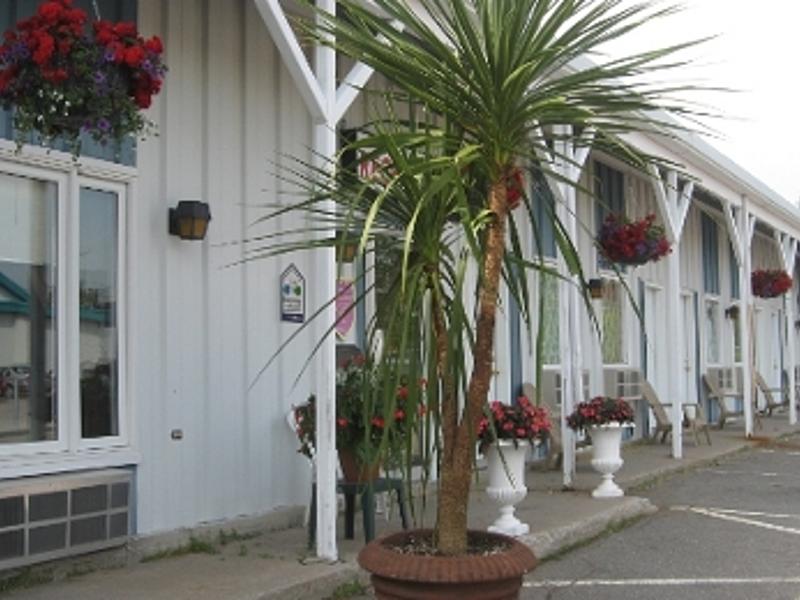 Sw motel rustik  c  diane cote big