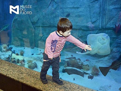 Aquarium  petit  atr small