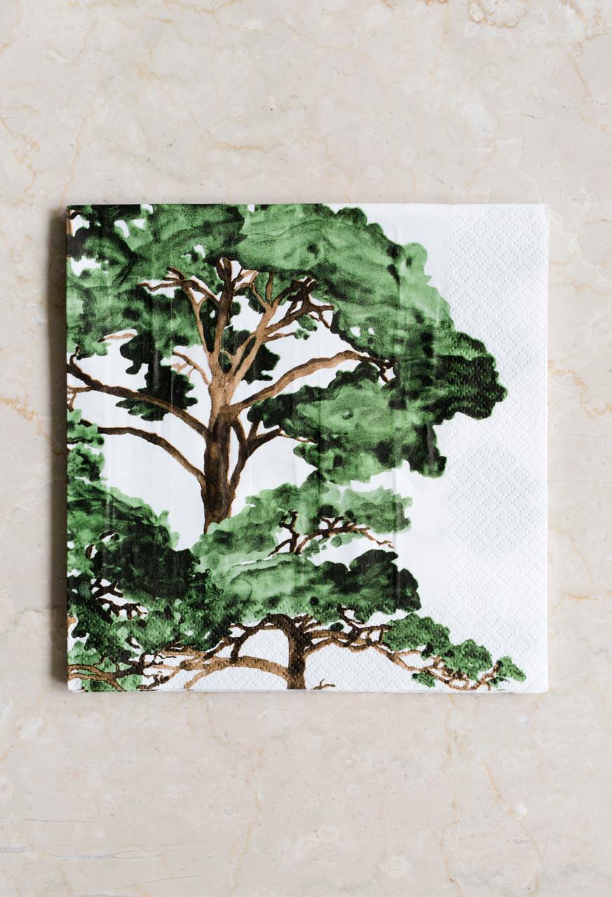 Paper Napkin, Hongisto