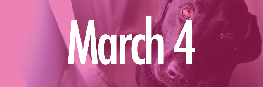 March 4 events sara kalke template   pink
