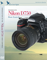 Introduction to the Nikon D750