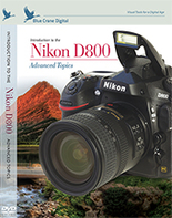 Introduction to the Nikon D800: Vol. 2
