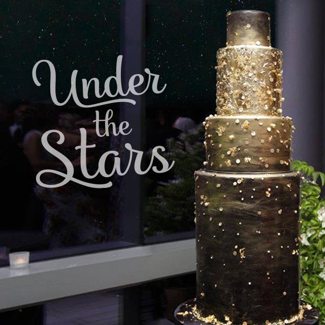 2018 Under The Stars Hero Image1 31 Opt8
