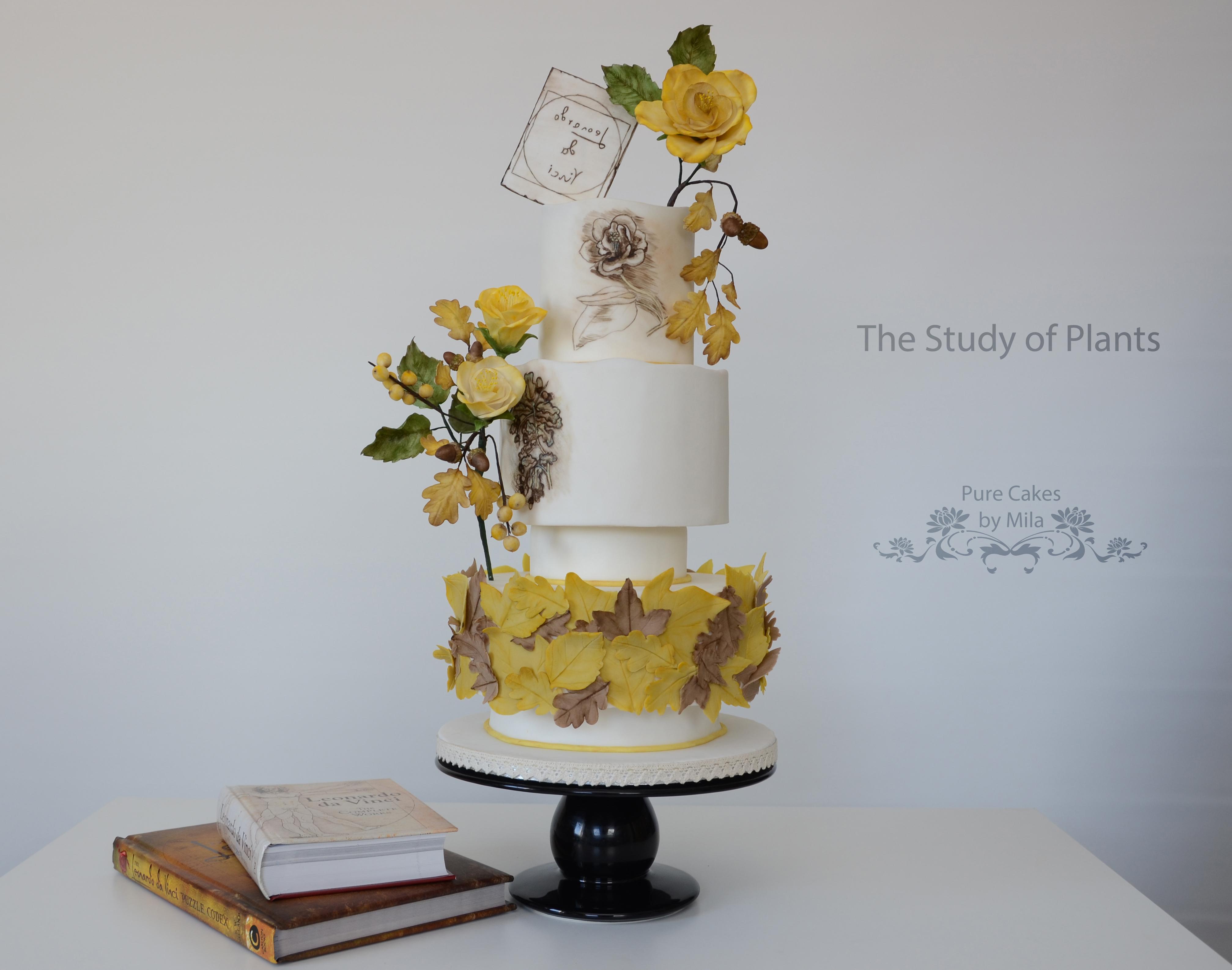 3.-Jamila-Jankipersadsing_Pure-Cakes-of-Mila_Study-of-Plants.jpg#asset:18148