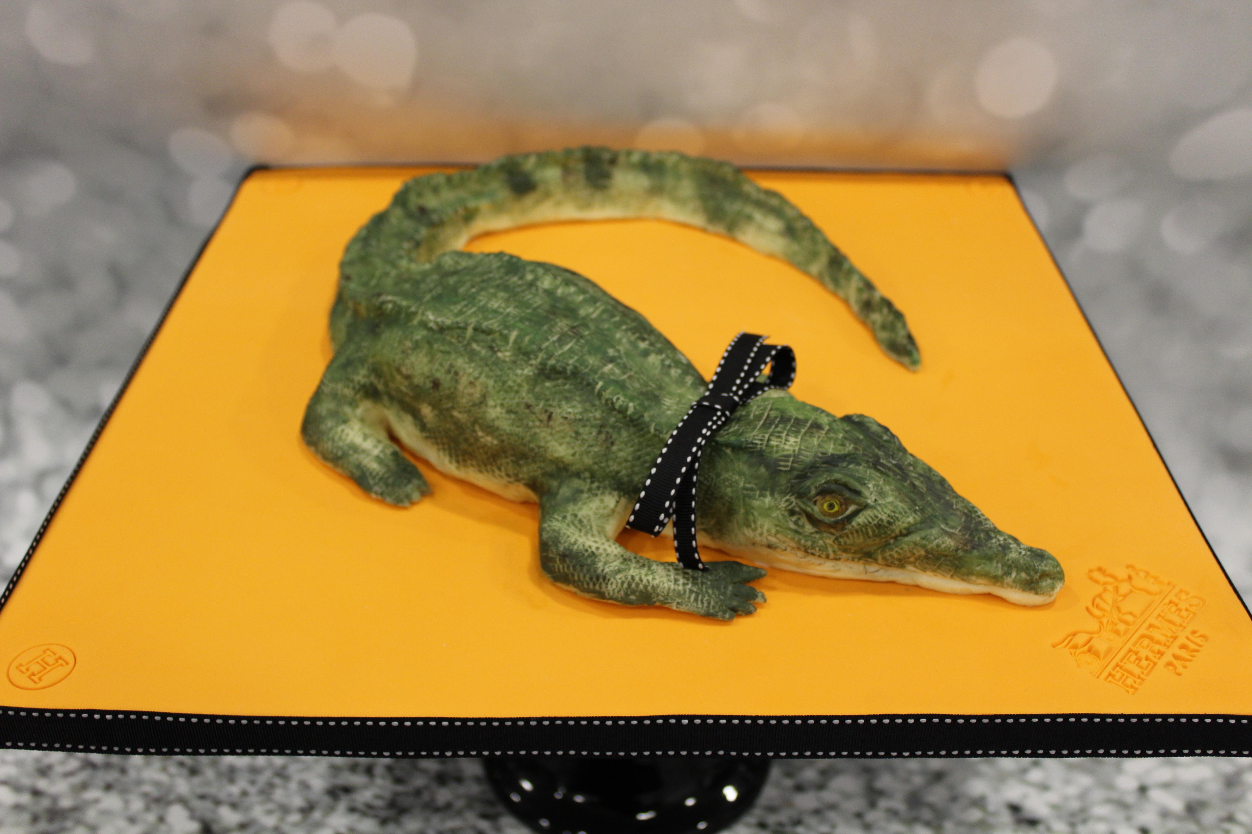 Animal-Rights-Denise-Passarelli-Denise-Makes-Cakes-Crocodile.jpg#asset:13718