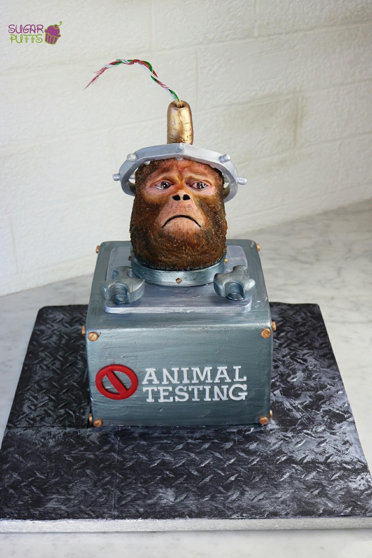 Animal-Rights-Eman-Abukoash-Sugar-Puffs-Cakes-Monkey.jpg#asset:13719