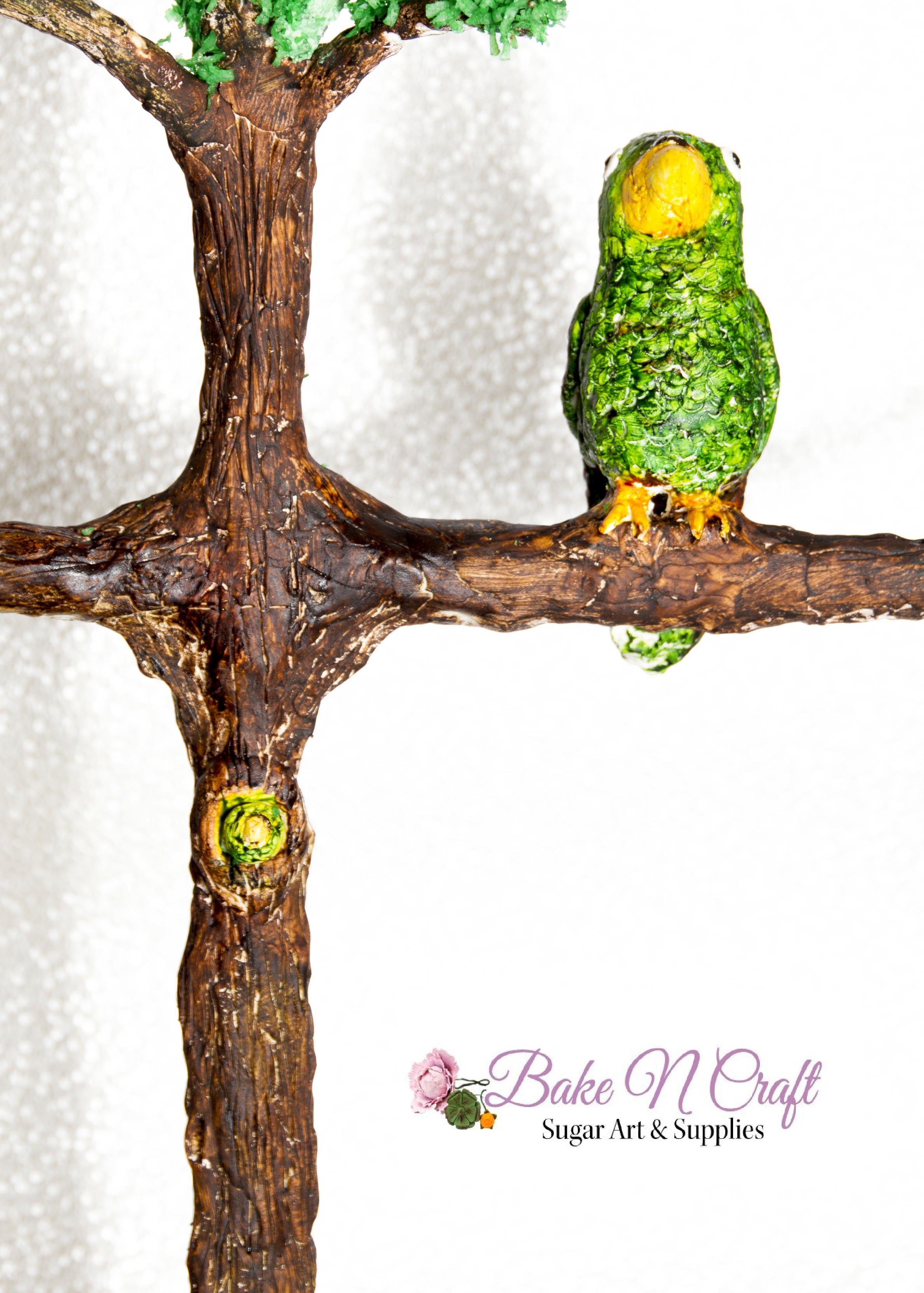 Animal-Rights-Ericka-Garcia-BakeNCraft-El-Chocoyo.png#asset:13720