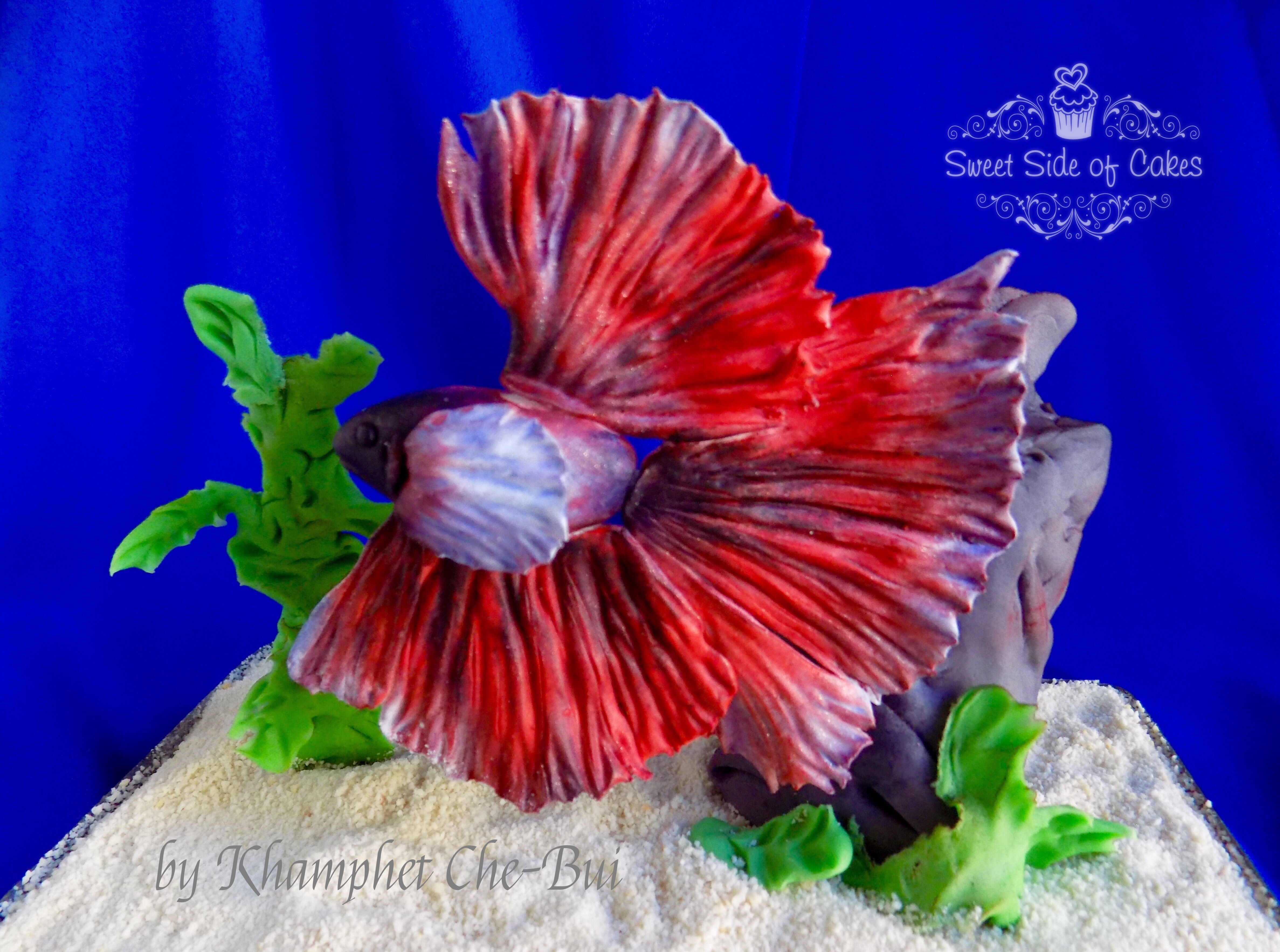 Animal-Rights-Khamphet-Che-Bui-Sweet-Side-Of-Cakes-Betta-Fish.jpeg#asset:13722