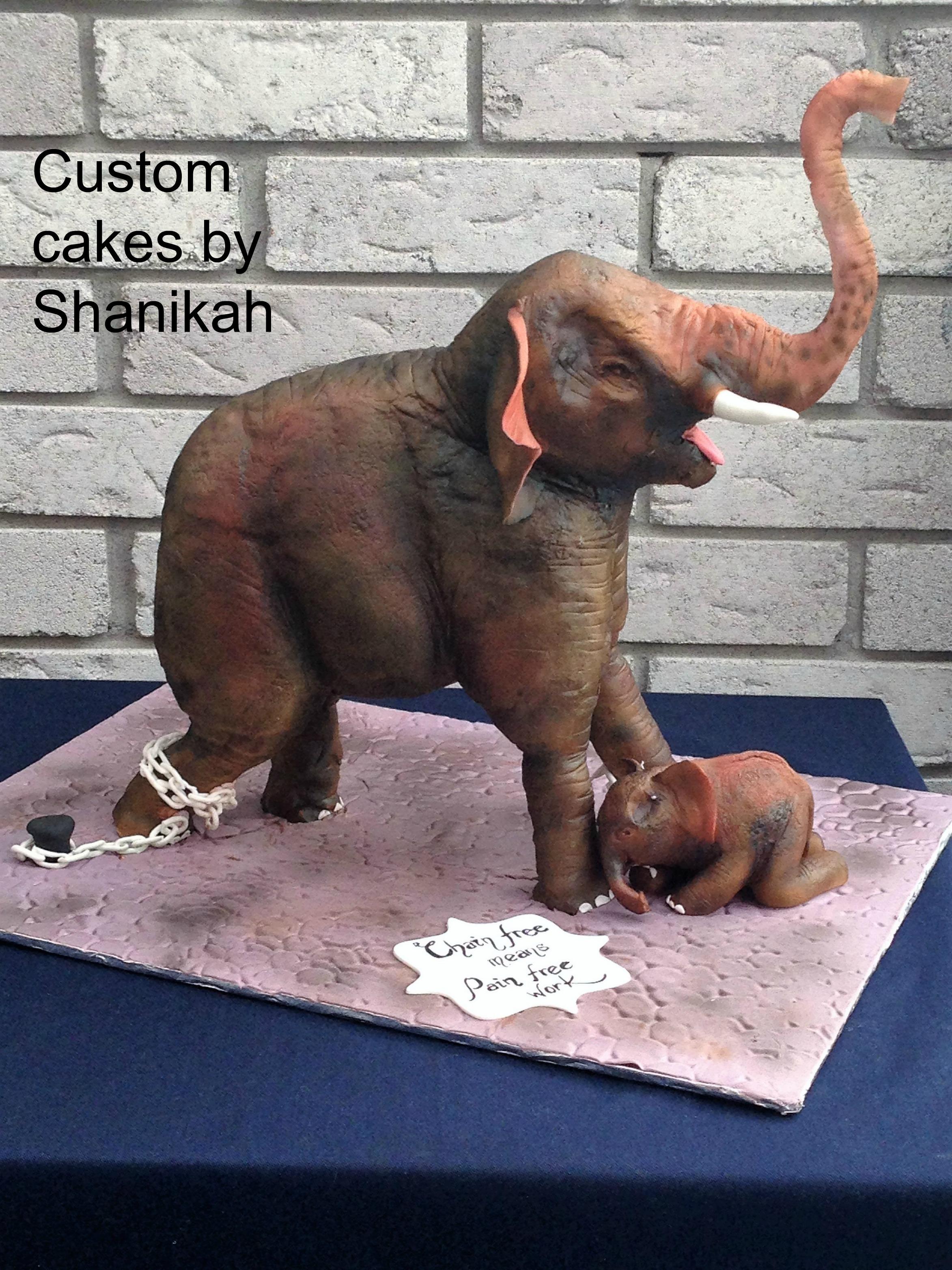 Animal-Rights-Shanikah-Fernando-Custom-Cakes-by-Shanikah-The-Asian-Elephant.jpg#asset:13736