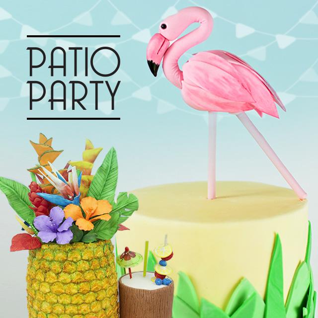Patio Party 6 170706
