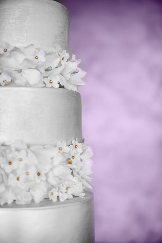 Suzana-Martino-Suz-Cake-Art-Wedding-Elegant-9-2.jpg#asset:14843