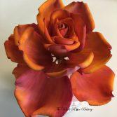 Nichola-Ferron-The-Black-Rose-Bakery-flower-7.jpeg#asset:17881:homeArtistCircle