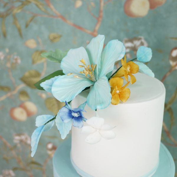 Daphne-Lau-Cake-Moment-Wedding-Wedding-Elegant-14-1.jpg#asset:17897:homeSlider