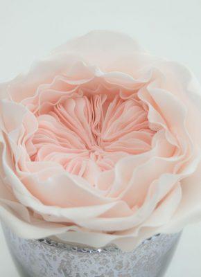 Mirjam-Saner-Mimis-Cupcakes-Wedding-Elegant-6.jpeg#asset:18317:paletteImage