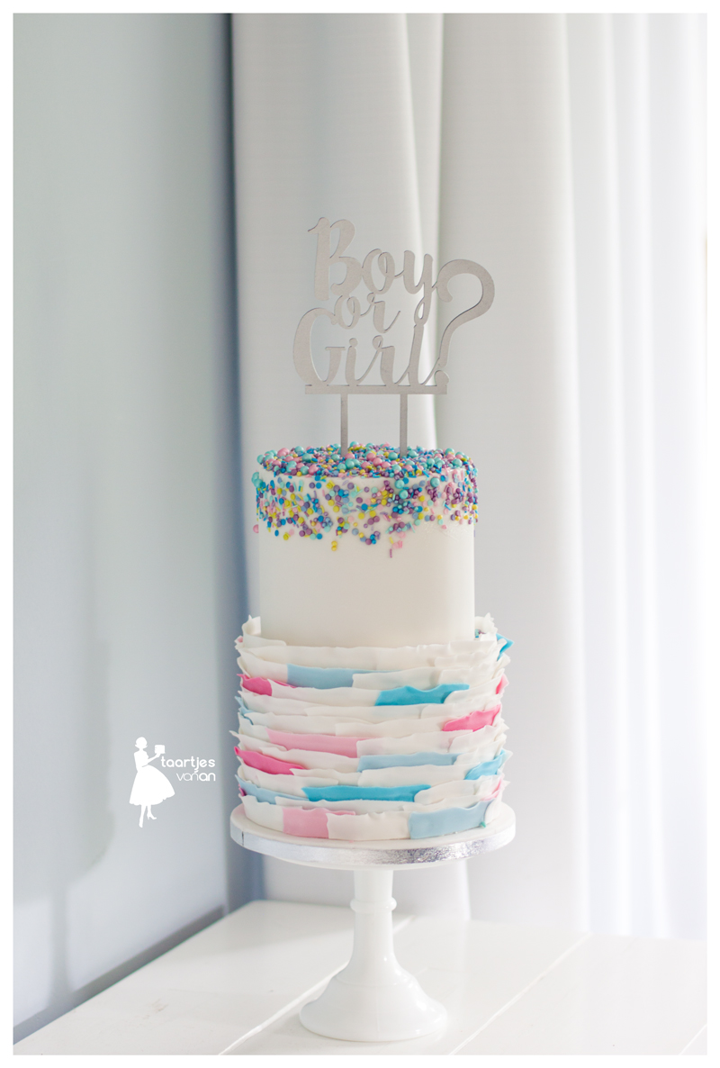 Bas relief pink and blue gender reveal cake