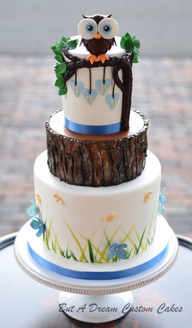 Woodland themed owl baby boy cake