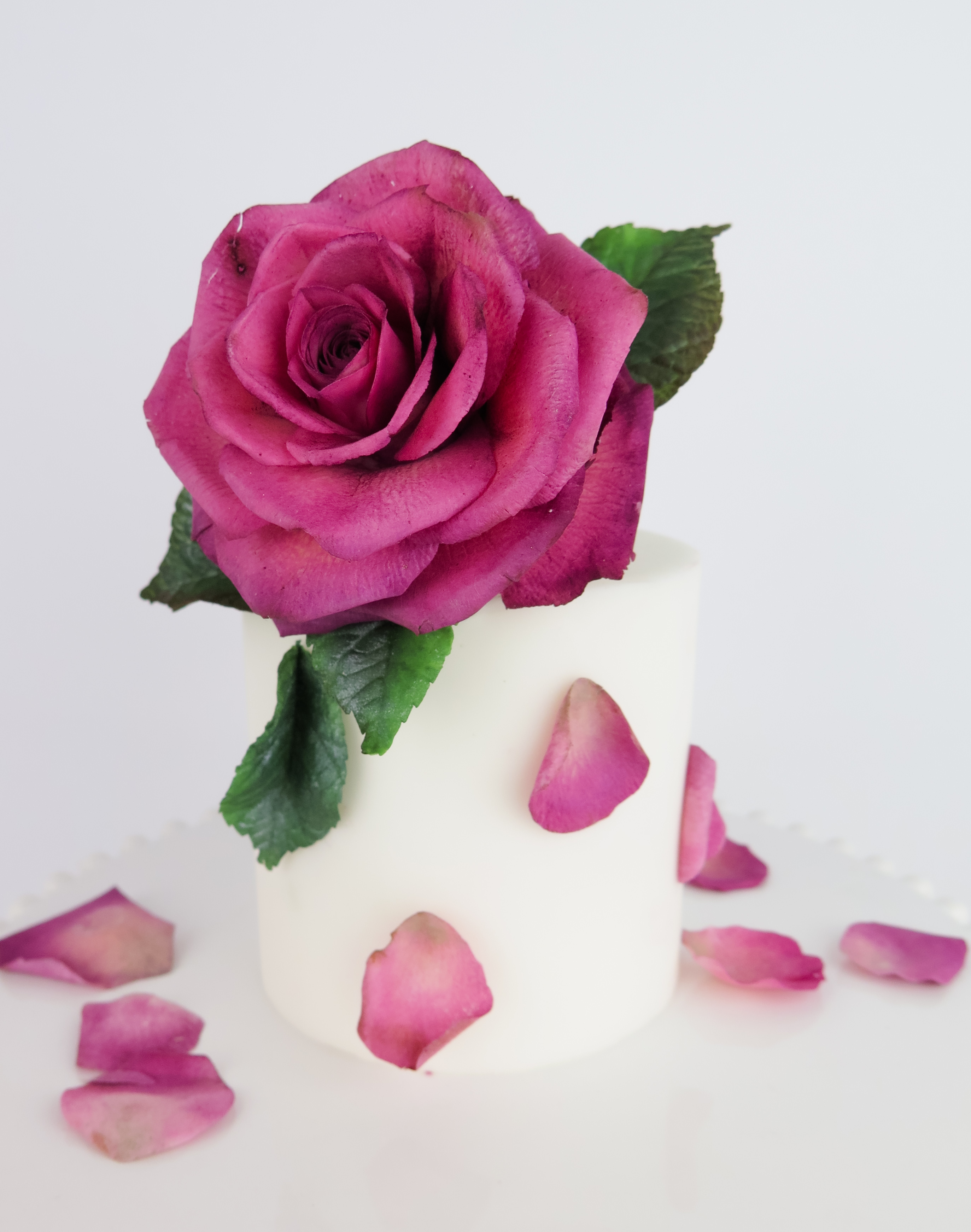 Mini white cake with oversized pink sugar rose on top
