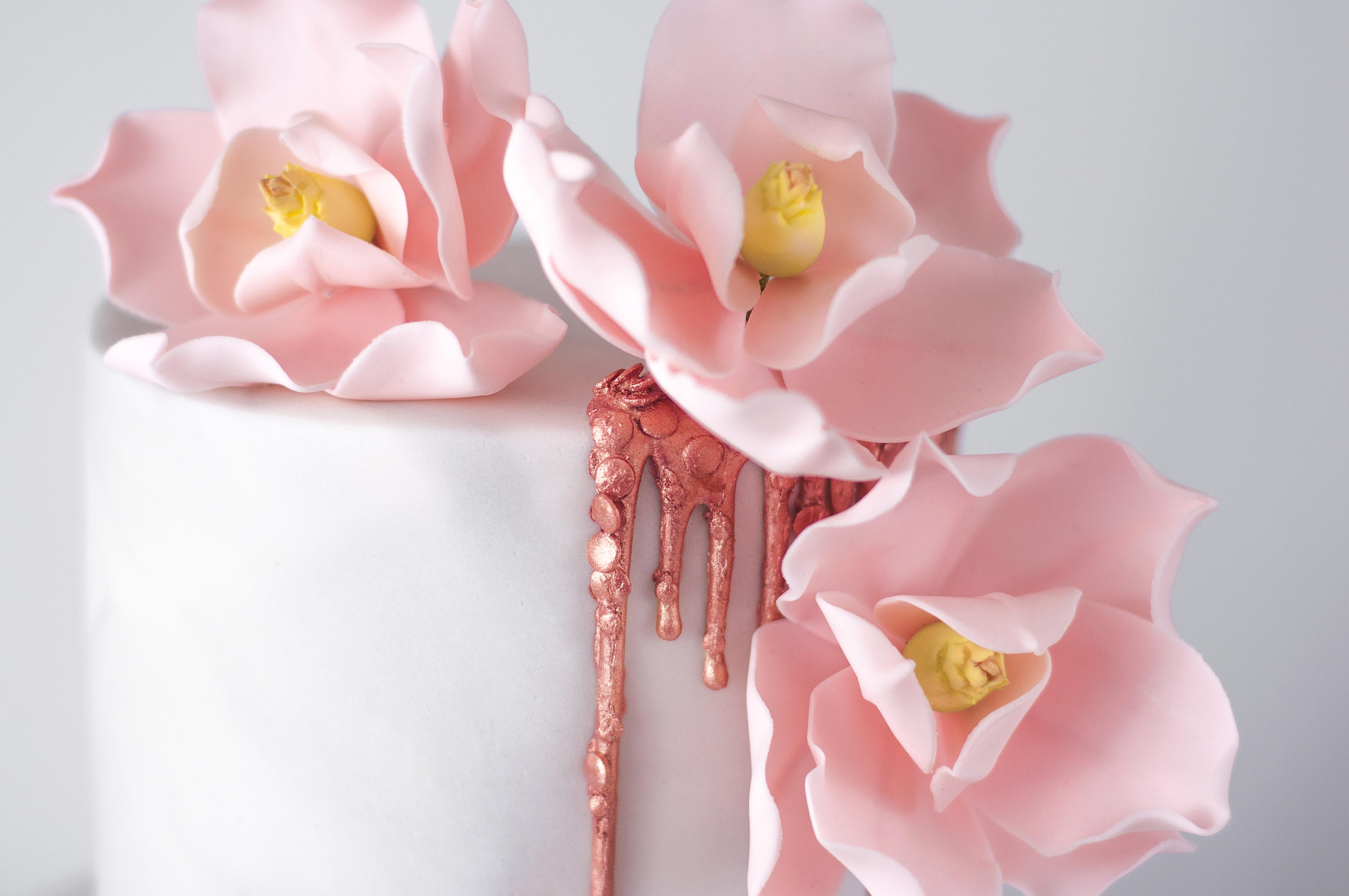 Pink sugar magnolias