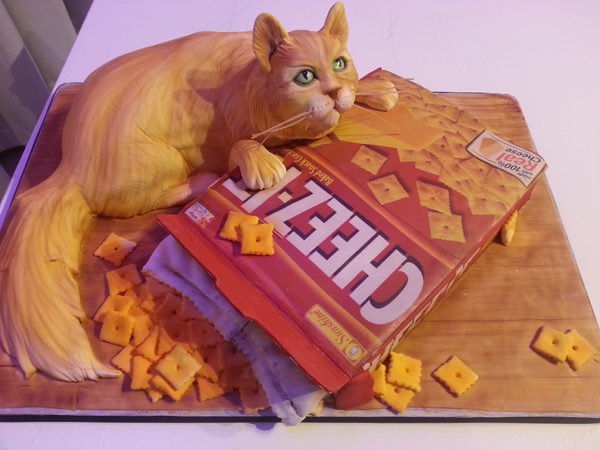 Cat and Cheez its