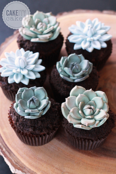 Sugar succulent cupcake toppers