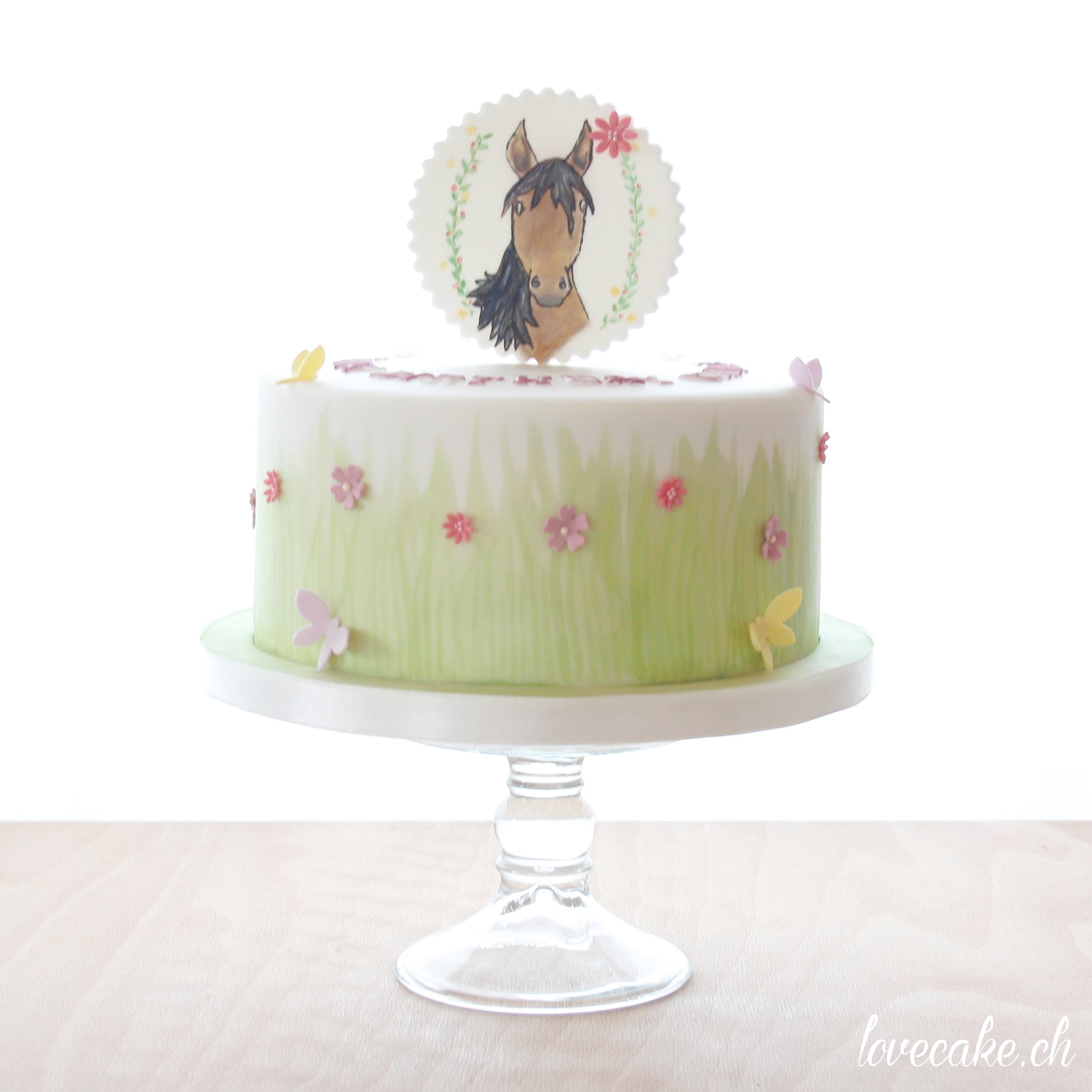Mini horse themed birthday cake