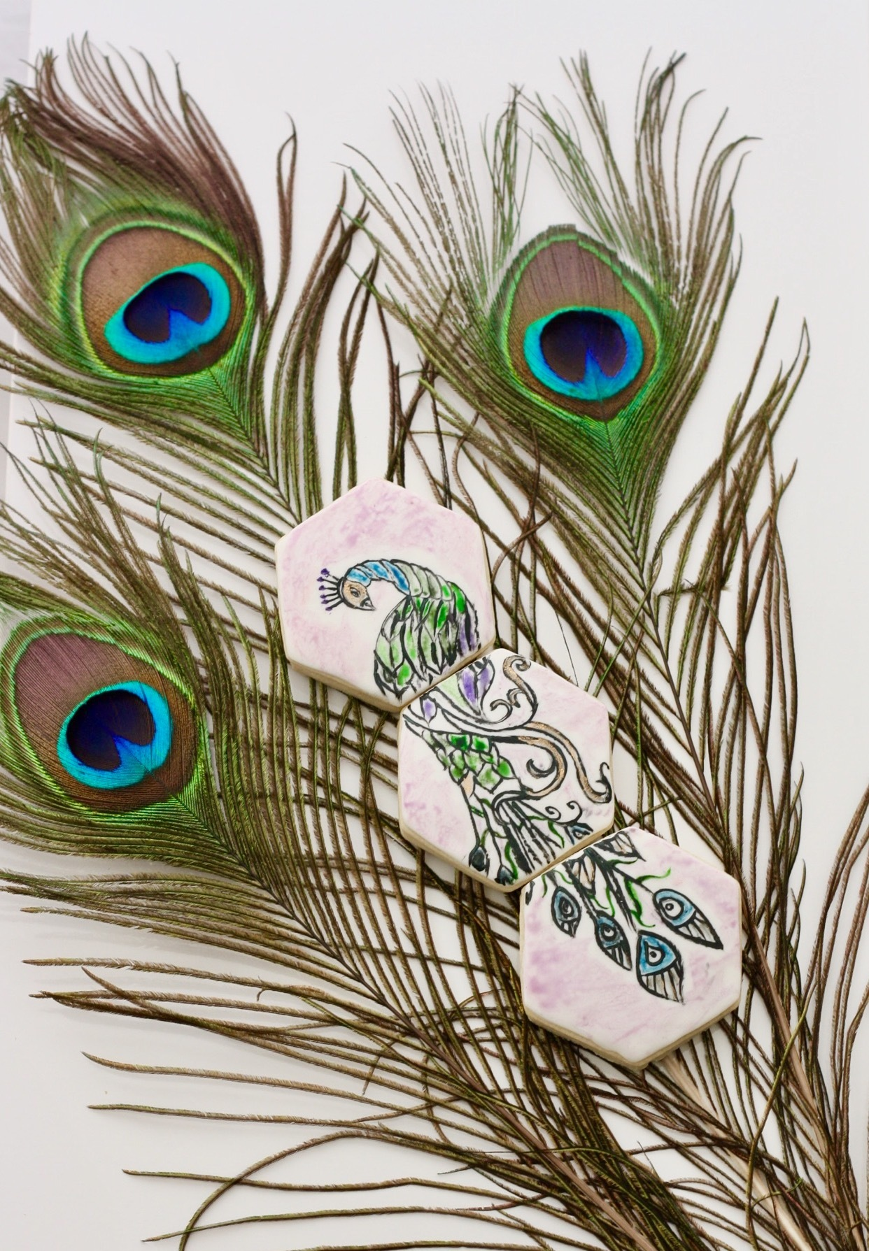 Handpainted peacock cookies