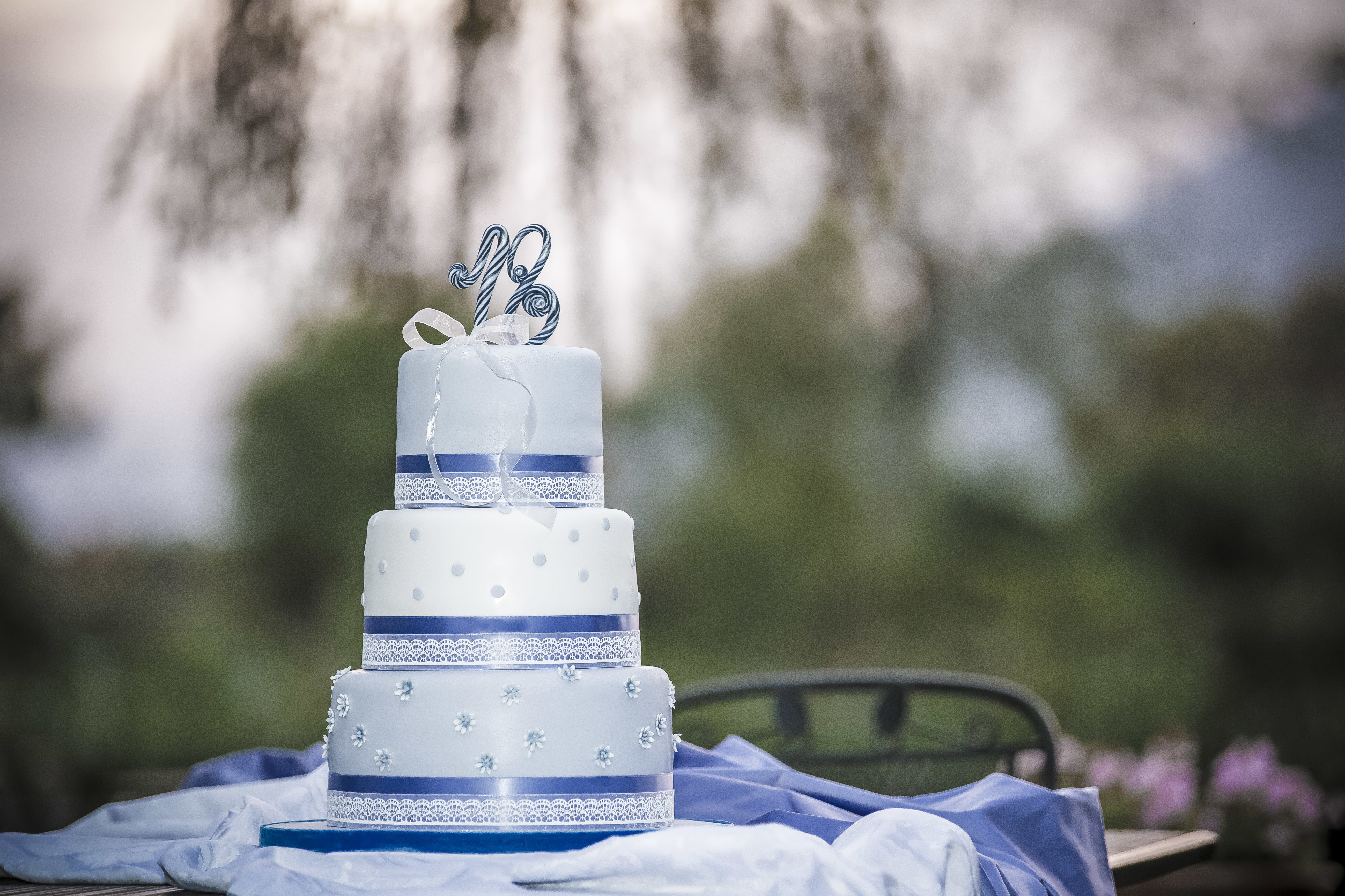 Blue & White Polka Dot Wedding