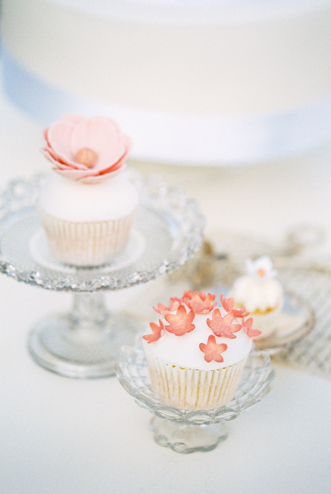 White cupcakes with sugar flowers