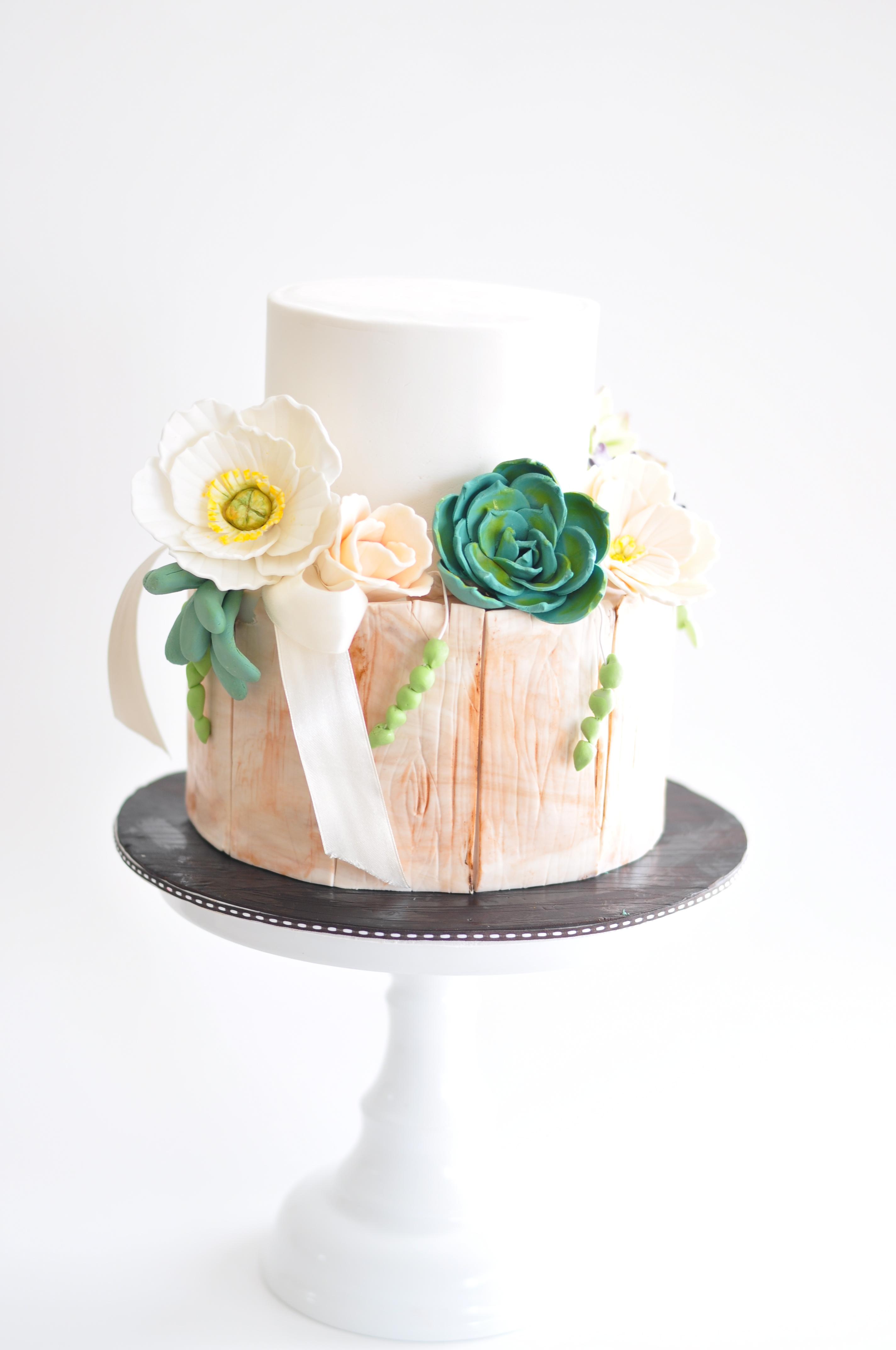 Handpainted rustic bark and sugar succulents cake