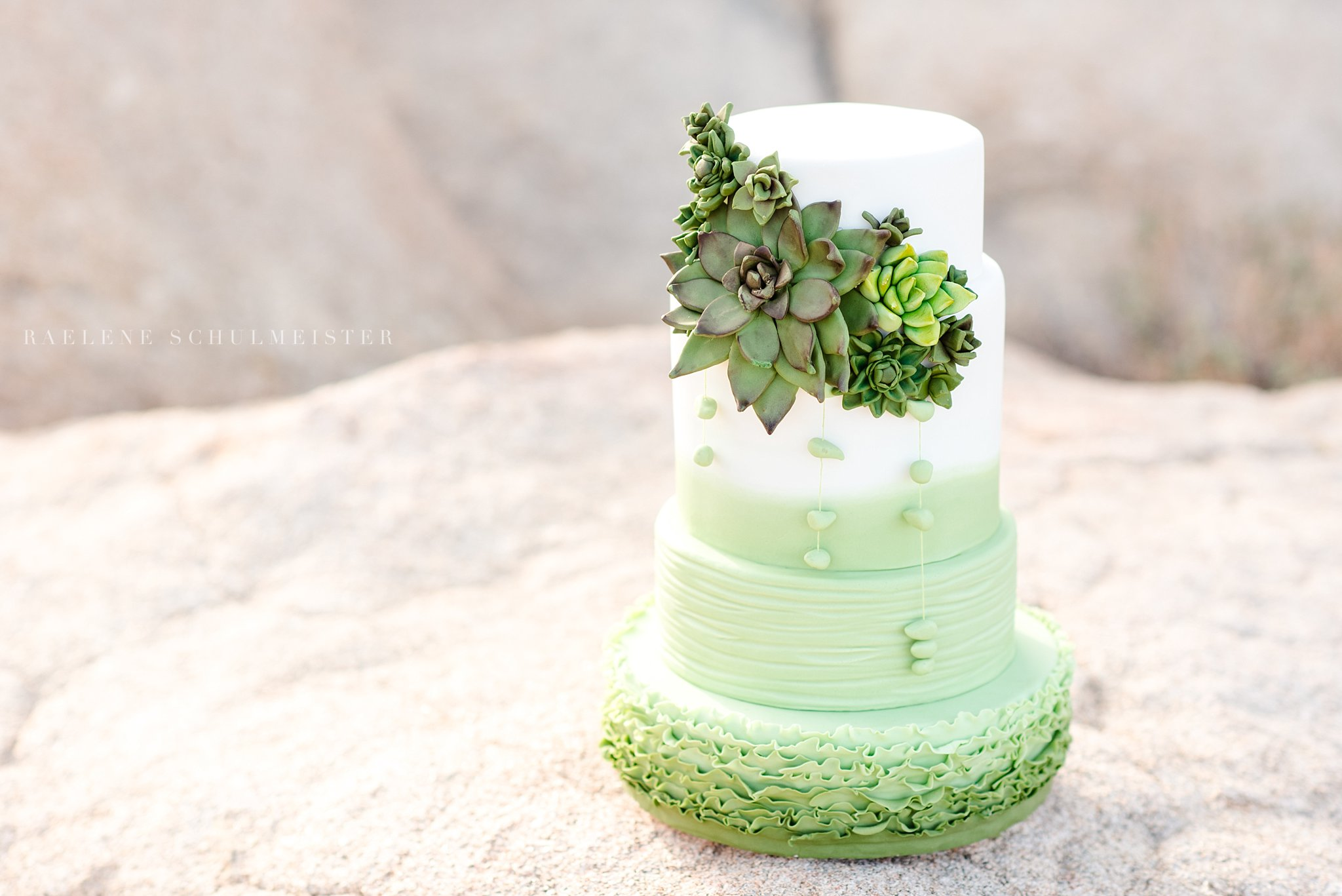 Green and white ombre wedding cake with sugar succulents