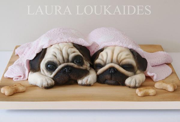 Puppies under blanket