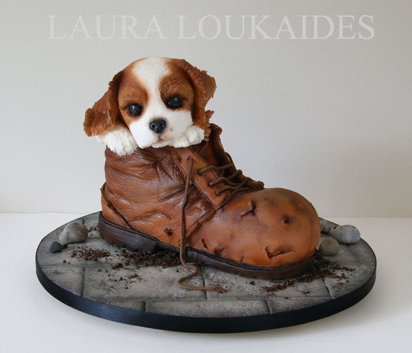 Puppy in boot