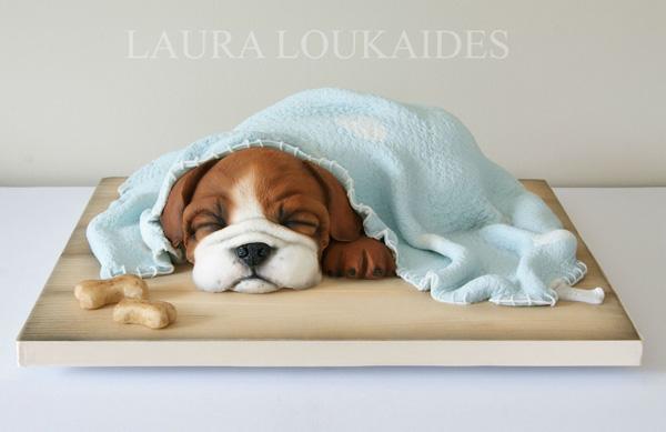Puppy under blanket