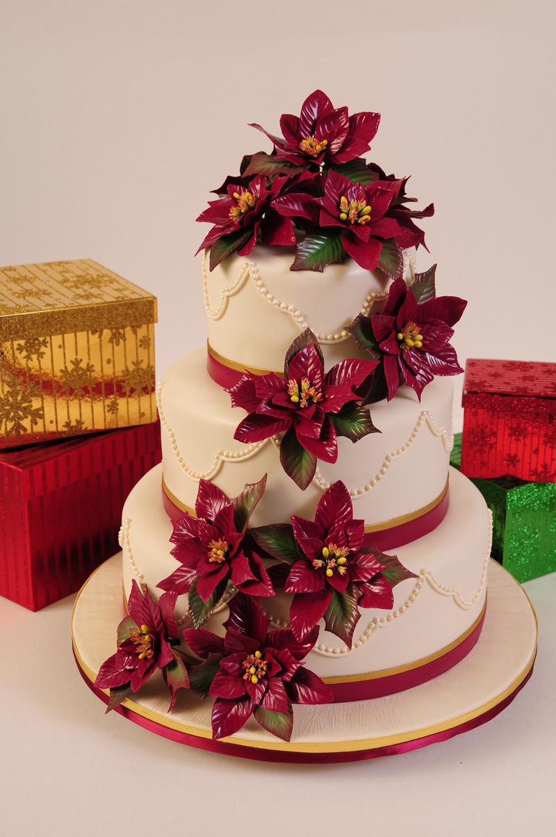 Poinsettia Winter Wedding