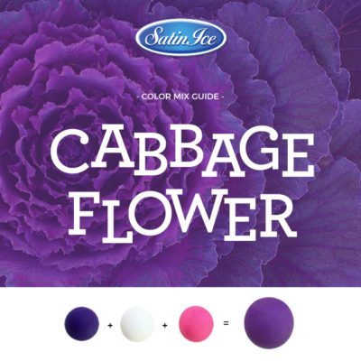 Sff 10 2 Am Sff Insta Colors Cabbage Flower 10 2
