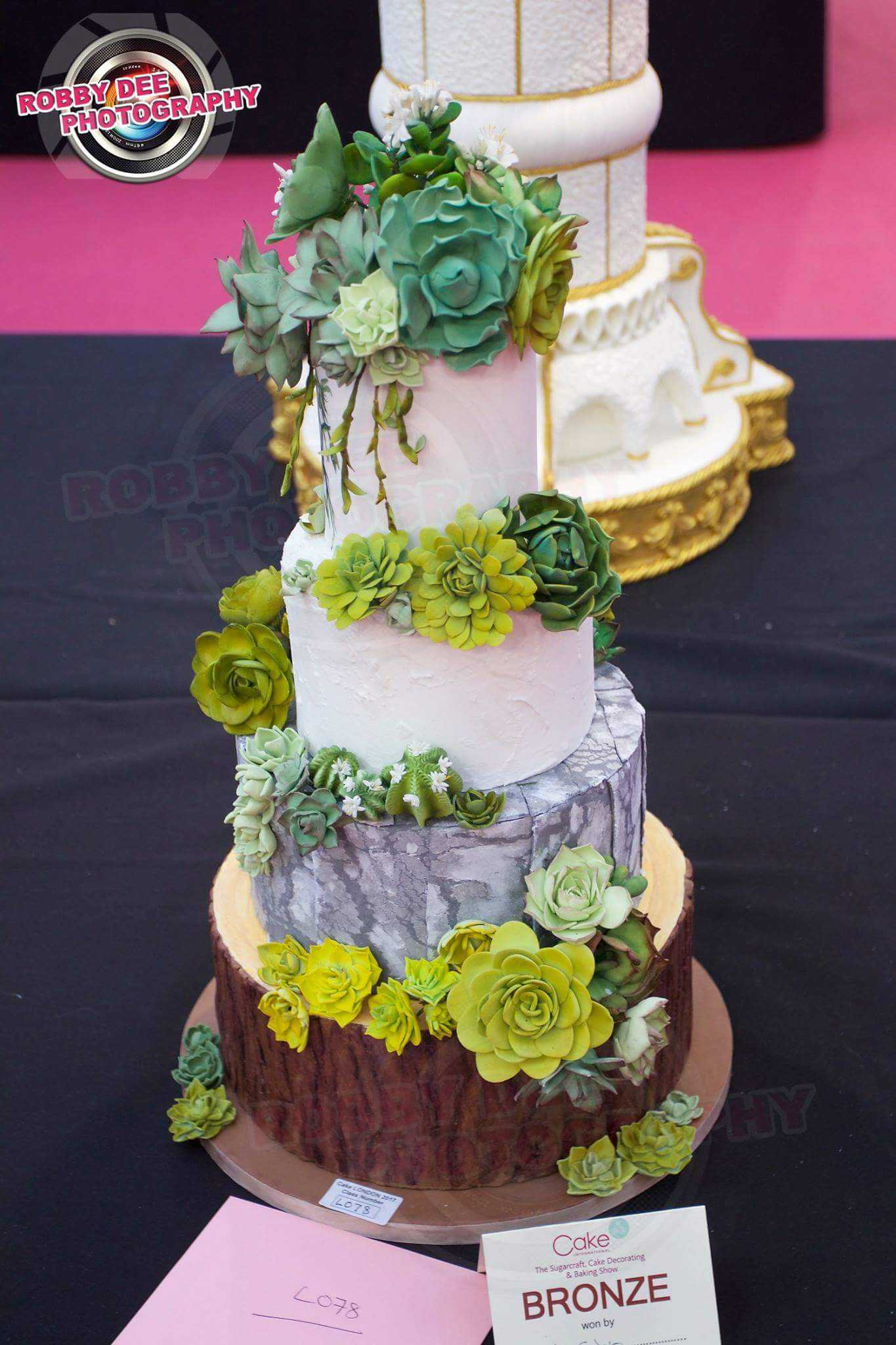 Rustic succulent wedding cake with bark