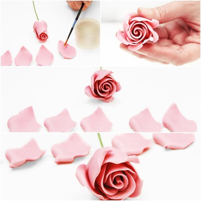 Medium-Rose-4.jpg#asset:15197
