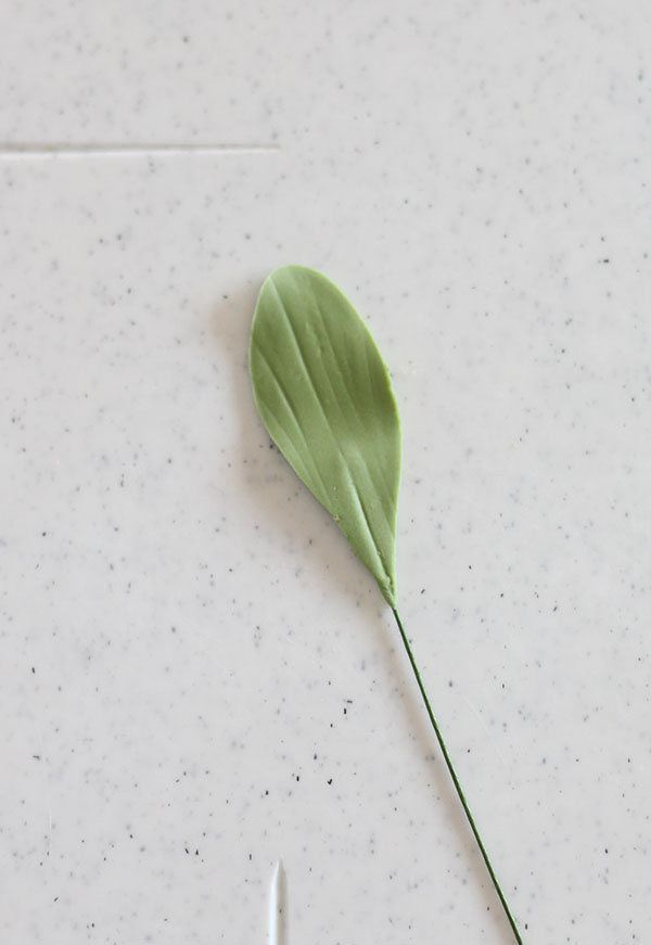 Mistletoe-2a.jpg#asset:22164