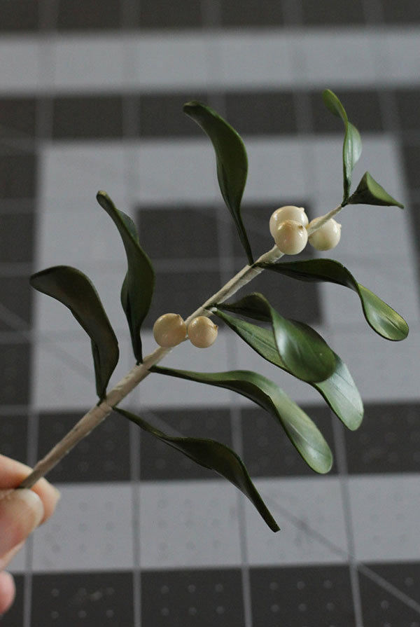 Mistletoe-7a.jpg#asset:22169