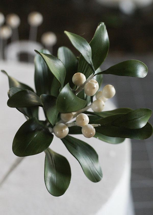 Mistletoe-9a.jpg#asset:22171
