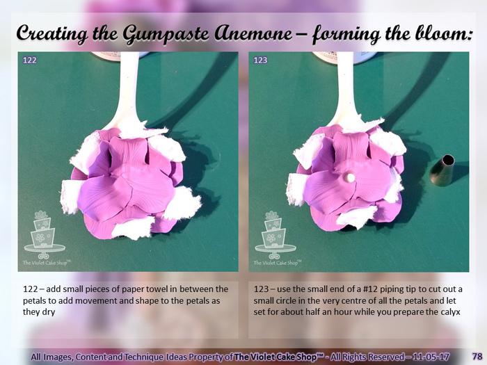 The-Violet-Cake-Shop-Gumpaste-Anemone-Tutorial-12.jpg?mtime=20180517131749#asset:31483