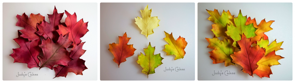 collage_leaves_-_3.png#asset:3216