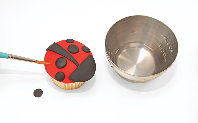 ladybug-7.jpg#asset:18031