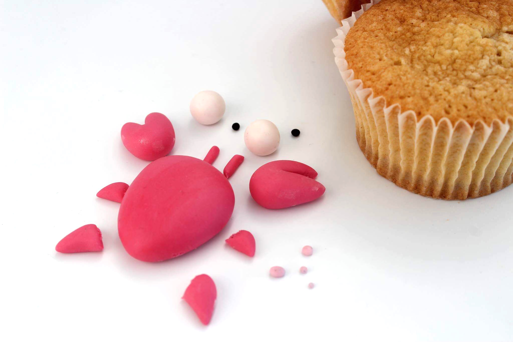 sff17_CrabTutorial-Monique-Ascanelli-The-Cake-Topper-Pieces1.JPG#asset:17070