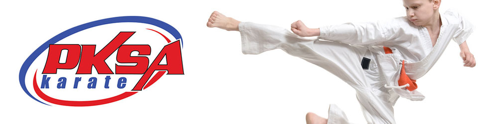 PKSA Karate Clarkston