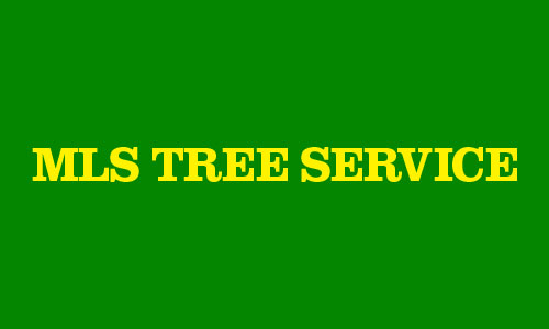 MLS Tree Service Coupons in Troy, MI